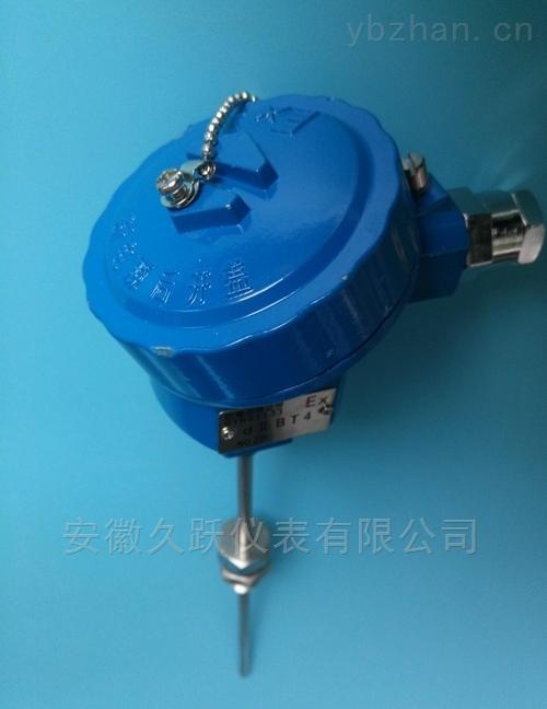 防爆铠装热电阻店WZPK2-241、WZPK2-244