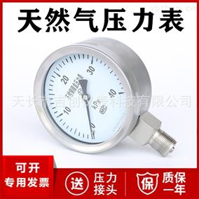 YE-100B天然气压力表厂家价格 压力仪表16KPa25KPa
