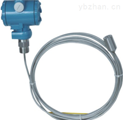 投入式压力变送器  LED-800F