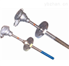 耐磨熱電偶  WRNN2-430