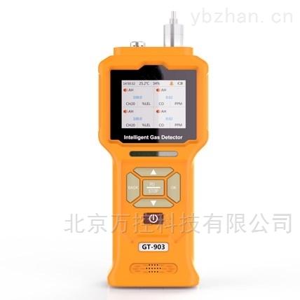 WK02-903-CO-泵吸式一氧化碳检测仪