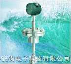 插入式蒸汽流量计-12V供电