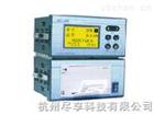 打印型温湿度记录仪