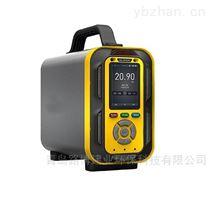 LB-MT6X手提式复合型气体分析仪有毒有害气体检测仪