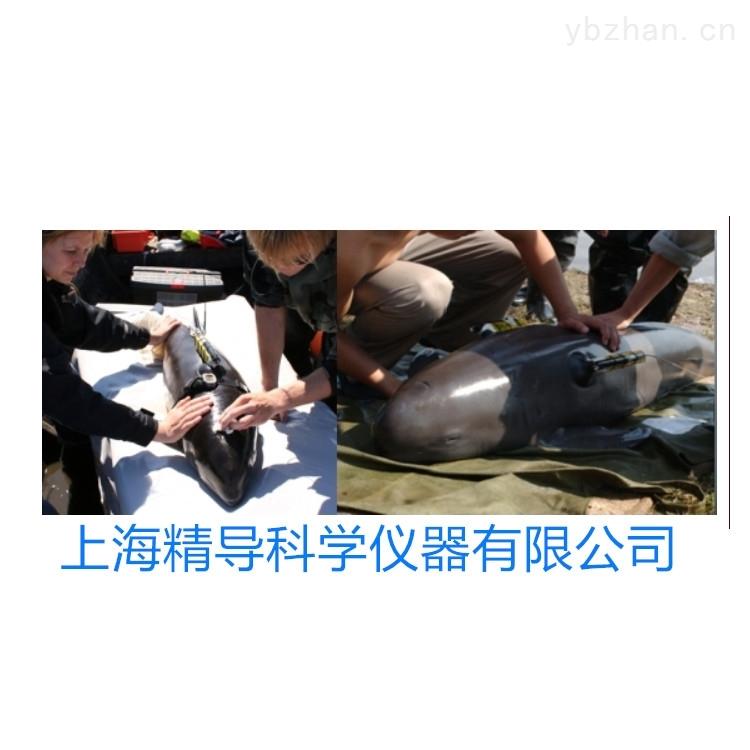 MMT A-tag海豚声学探测仪鱼类生态追踪仪