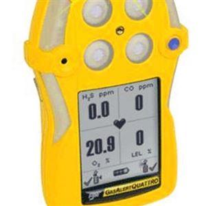 加拿大BW QT系列四合一气体检测仪