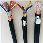 耐高温计算机电缆ZR-DJFP2FP2