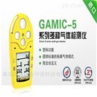 GAMIC-5系列多种气体检测分析仪