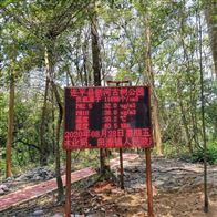 森林景区负氧离子浓度实时在线监测仪