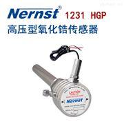 1231HG高压型氧化锆探头
