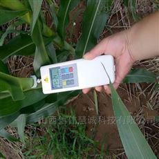 ZWD-1植物茎秆强度抗倒伏穿刺三合一测定仪
