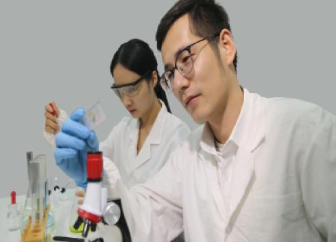 科學家開發微型防撞傳感器 兩秒內即可做出反應