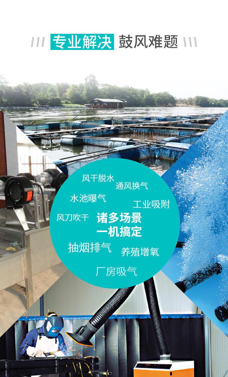 高压风机 中国台湾 22kw高压漩涡风机 江苏高压风机厂家示例图5