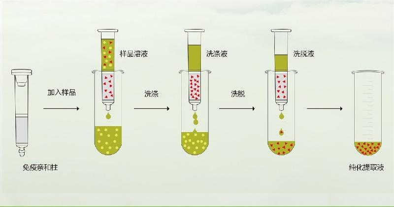 呕吐毒素免疫亲和柱操作流程