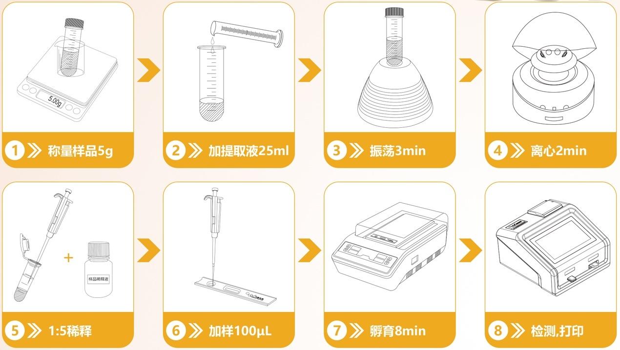 黄曲霉毒素检测流程