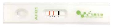 雙T線檢測技術
