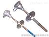 WZCN-230WZCN-230耐磨热电阻