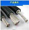 AC-JHS电缆 1*35铝合金防水电缆